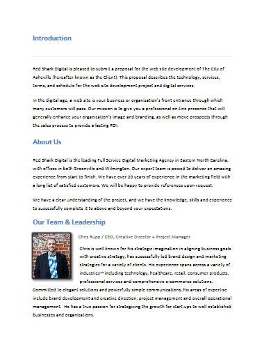 digital marketing proposal in pdf