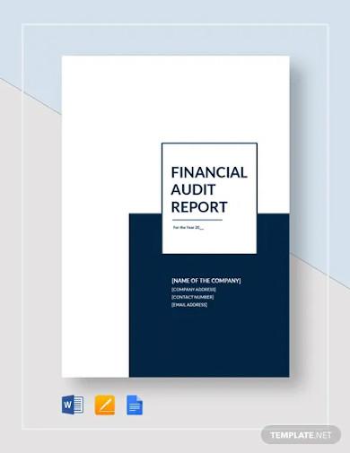 financial audit report template