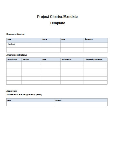 hospital project charter template