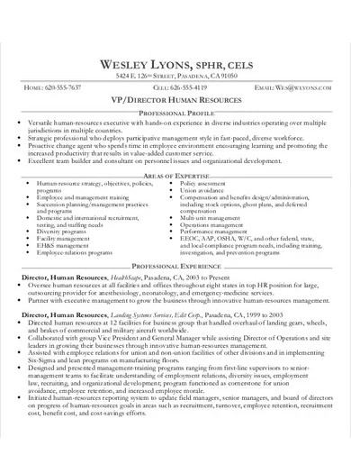 human resource director cv template