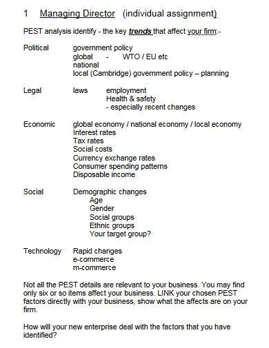 individual small business plan