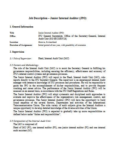 junior internal auditor job description