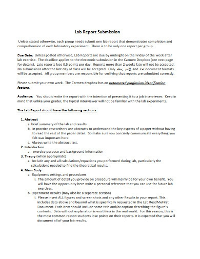 lab report submission template