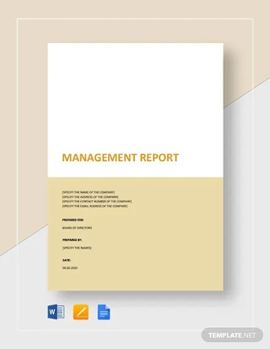 management report to board of directors template