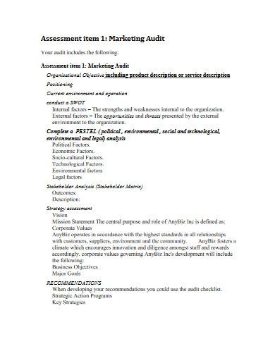 marketing audit in pdf