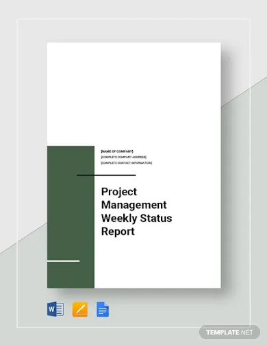 project management weekly status report templates