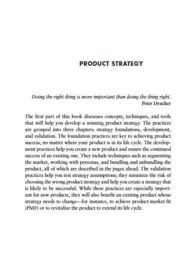 sample product strategy