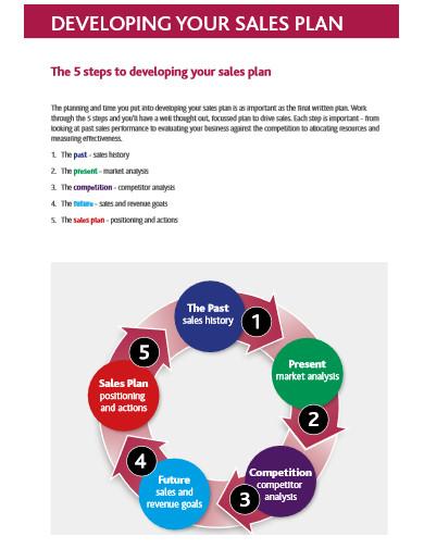 sample sales business plan