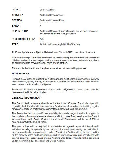senior auditor job description