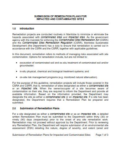 site remediation plan template