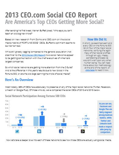 social ceo report