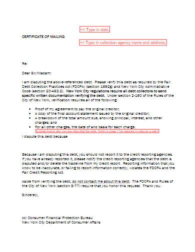sample debt collection dispute letter