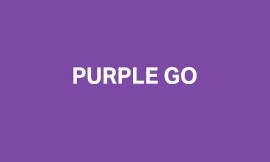 PurpleGo Pitch Deck Example