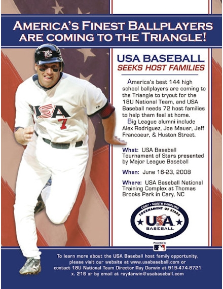 Sports Flyer Example of American Baseball