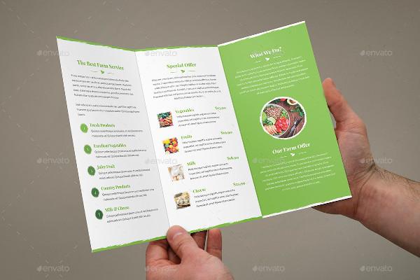 brochure organic food tri fold