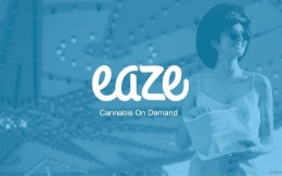 Eaze Pitch Deck Example