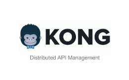 Kong Pitch Deck Example