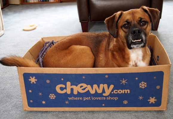Chewy Branding