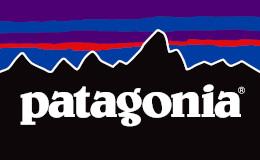 Patagonia Vision Statement