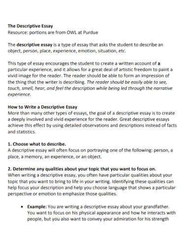 academic descriptive essay for university