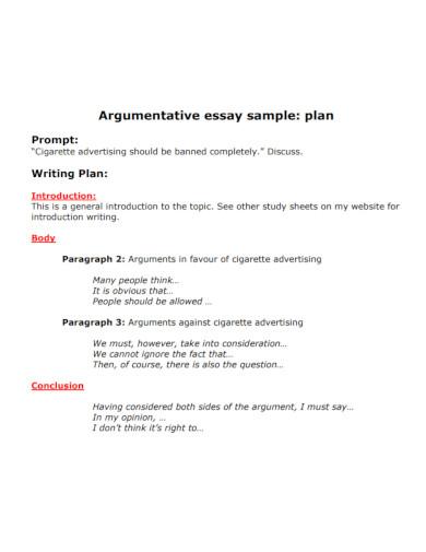 argumentative essay plan