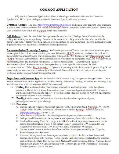 common application essay in doc