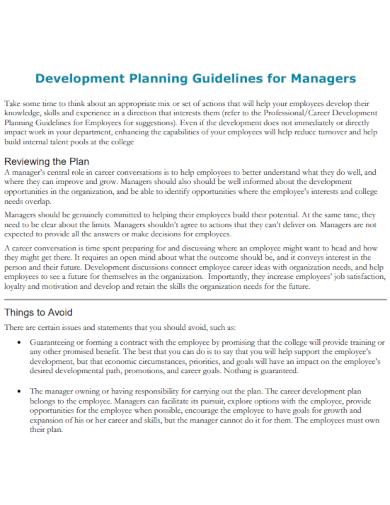 development plan guidelines