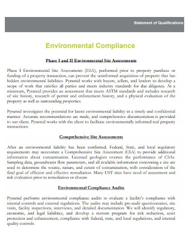 environmental statement of qualifications