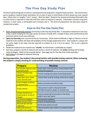 five day study plan template