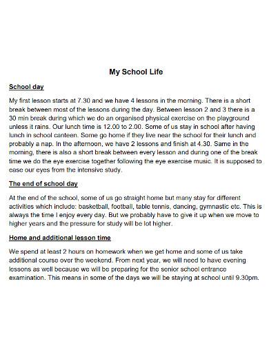 high school life essay example
