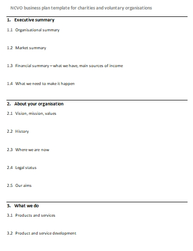 ngo charity business plan template