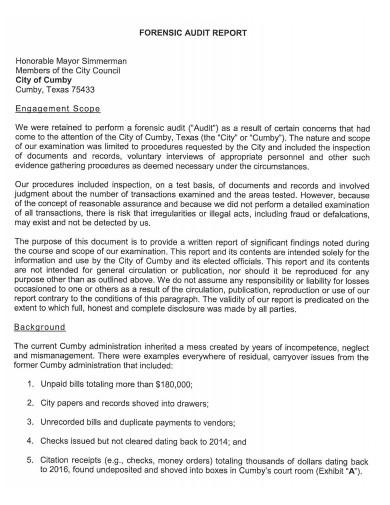 printable forensic audit report
