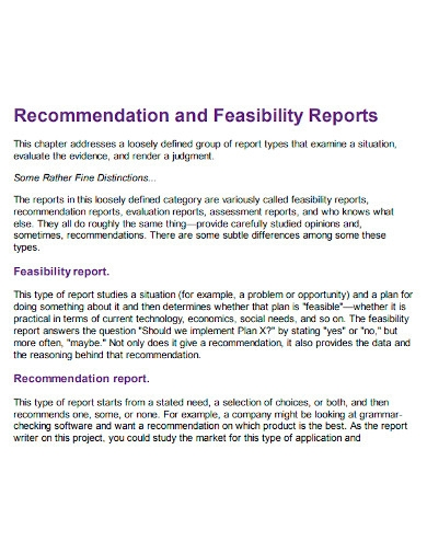 recommendation and feasibility report