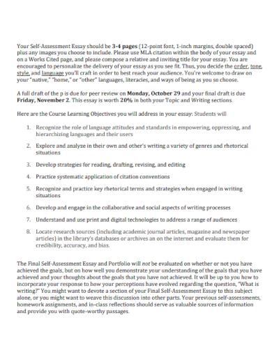 sample portfolio essay