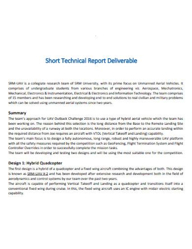 short technical report deliverable
