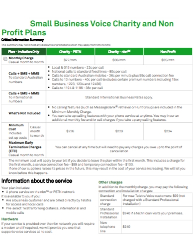 small business charity non profit plan