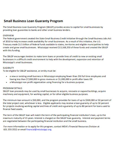 small business loan guaranty program