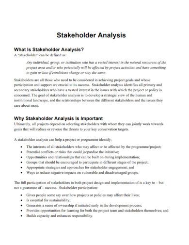 standard stakeholder analysis
