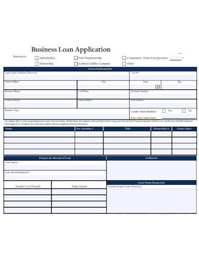 startup business loan application