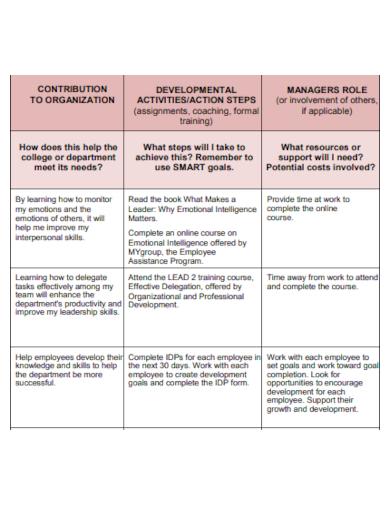 sample development plan for manager