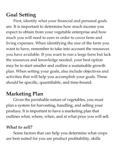agriculture vegetable business plan