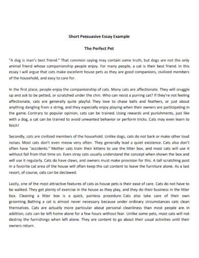 basic short persuasive essay