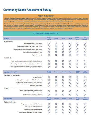 community needs assessment survey