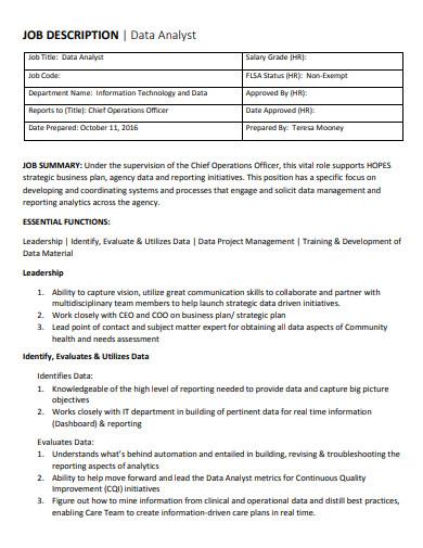 data analyst job description example
