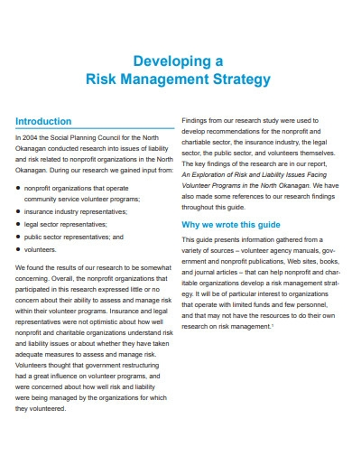 developing risk management strategy