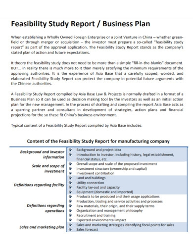 feasibility study report business plan