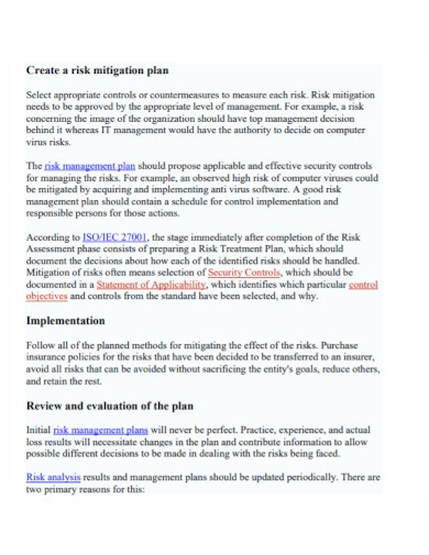 financial risk management mitigation plan