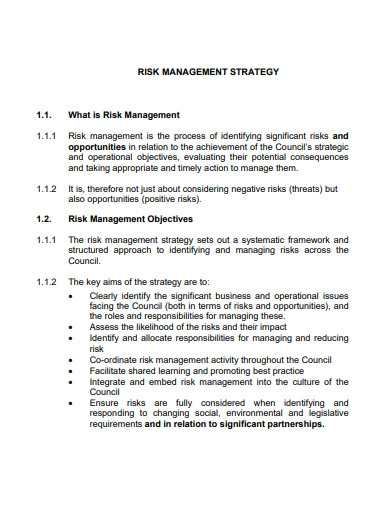 formal risk management strategy