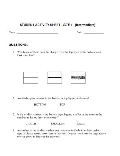 intermediate student activity sheet