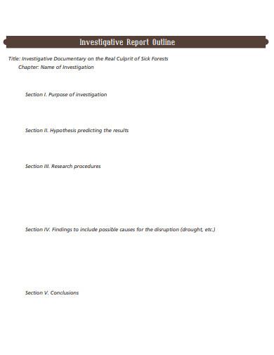investigative report outline in pdf